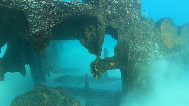 Os destroços do navio captados pelos mergulhadores Miguel Castro e Pedro Ramalhete