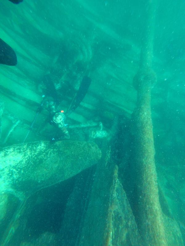 - Fotografia subaquática ao largo da Praia do Bom Sucesso (fotografia de João Pereira há dois anos)