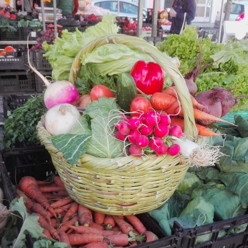 Produtos agrícolas passam a ser vendidos temporariamente na Expoeste