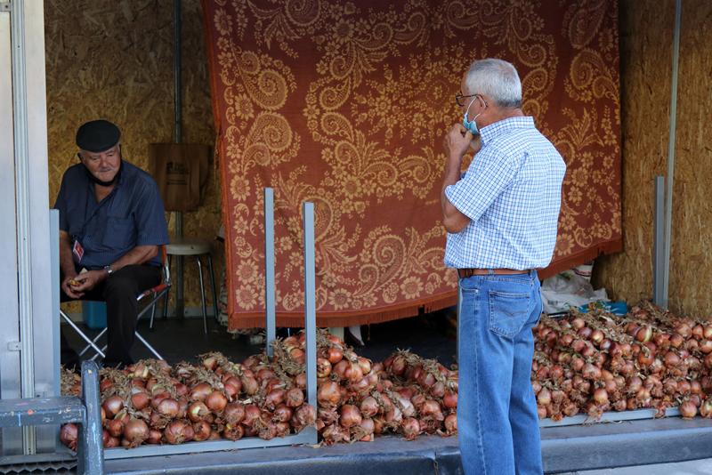 Produtores exibiram as suas cebolas