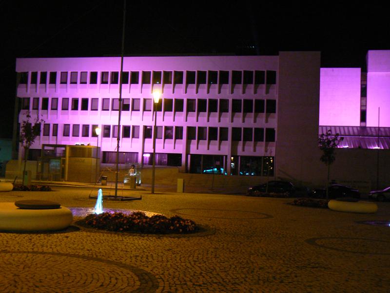 Paços do Concelho iluminados de rosa (foto Rui Miguel)