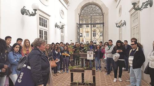 Uma visita ao Parque D. Carlos I com a professora Mercês Matos